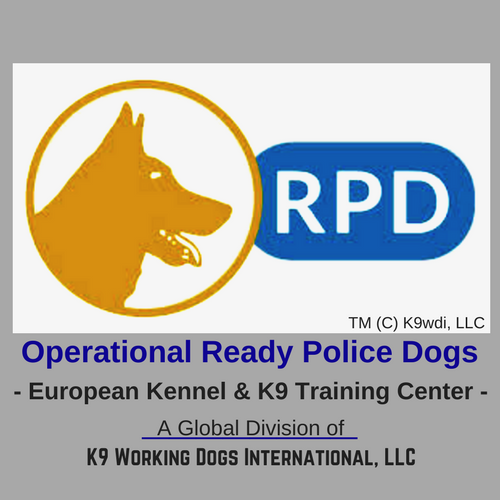 European Police Dogs For Sale - Operational Ready Police Dogs | ORPD K9