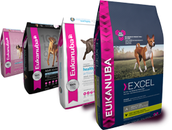 Eukanuba Premium Adult Dogfood - AVAILABLE NOW!