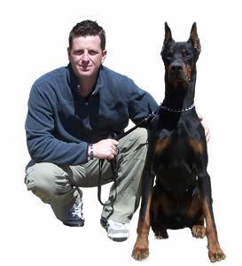 Police K9 For Sale | Personal Protection Dogs For Sale | Federally Licensed Training Center - K9 Working Dogs International, LLC