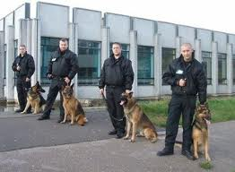 Sia Dog Handler Training