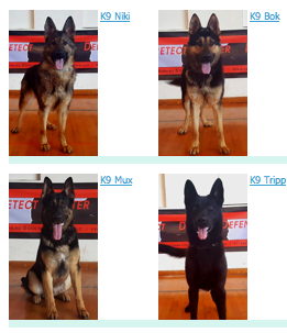 Police K9s For Sale | Handler Training - K9 LEAP Grant Program